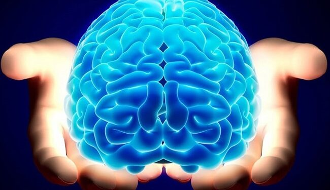 Types Of Memory: How Does The Human Brain Store Memories?